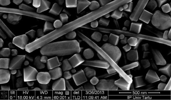 nanoosakesed