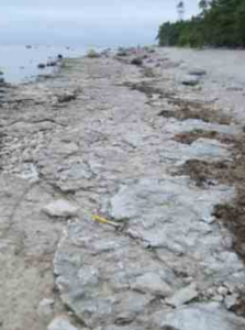 Saxby rannikupaljand Vormsil