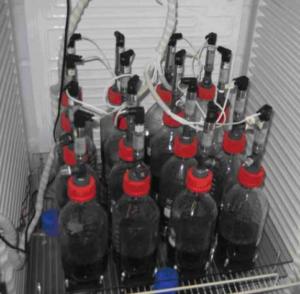 biojäätmed
