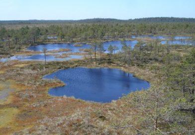 Keskkonnavaldkonna rahastamine