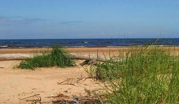 Läänemere lämmastikureostuse vähendamise võimalusi.