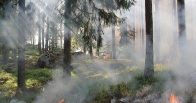 arupuru aitab keskkonda jälgida
