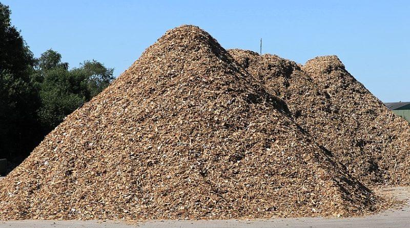 hakkpuit biokütuse katlamaja