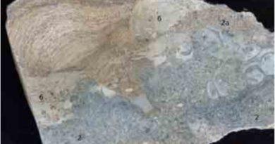 Lääne-Saaremaa Vesiku kihtide eripärasid uudistamas