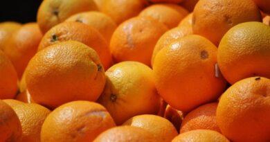 apelsinikoortest biopakendid