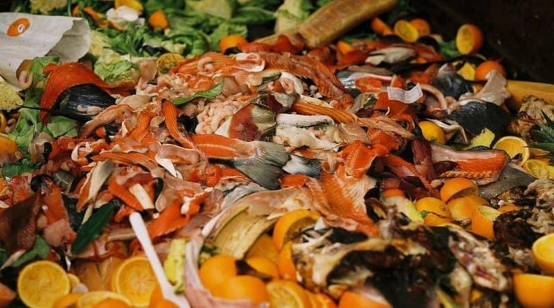 Eesti vajab ühtset üleriigilist jäätmete kogumissüsteemi