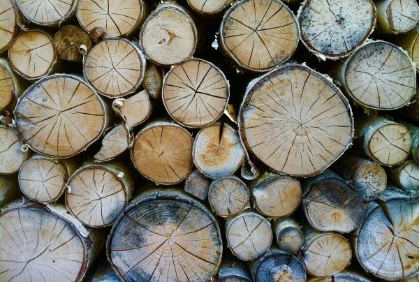 Adven ostab metsatööstusfirma Pankaboard energiatootmise