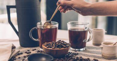 Pauligi kohvipuru projekt 2019