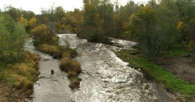 Ida- ja Lääne-Virumaa veekogumite seisundit püütakse parandada