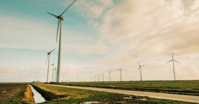 Taastuvate energiaallikate osakaal elektri tootmisel suurenes 2019. aastal