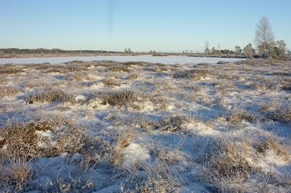 Eestis on keskkonnamüra vähem kui mujal Euroopa Liidus