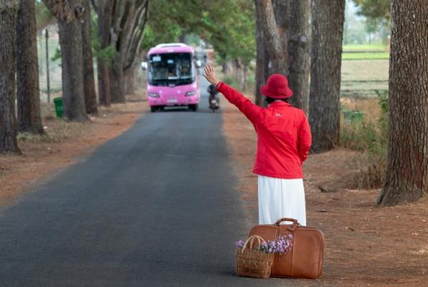 Nõudepõhine ühistransport kogub populaarsust