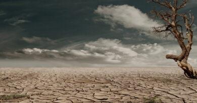 Euroopa Komisjon kuulutas välja Euroopa kliimapakti algatuse
