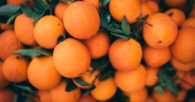 Apelsinikoortest valmistatud taaskasutatavad plastpudelid