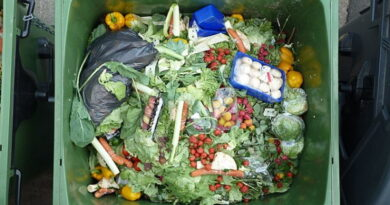 Eestis tekib 167 000 tonni toidujäätmeid aastas