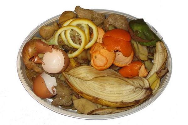 Oleme harjunud, et toidujäägid on prügi, mis tekib meie igapäevaellu. Et toidukadu oleks väiksem, tuleks palju asju eelnevalt läbi mõelda